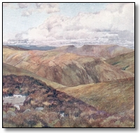 a bleak moorland